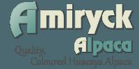 Amiryck Alpaca – Breeders of quality, coloured alpaca with alpacas for sale